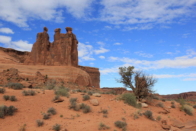 2013Arches_National_Park63.JPG