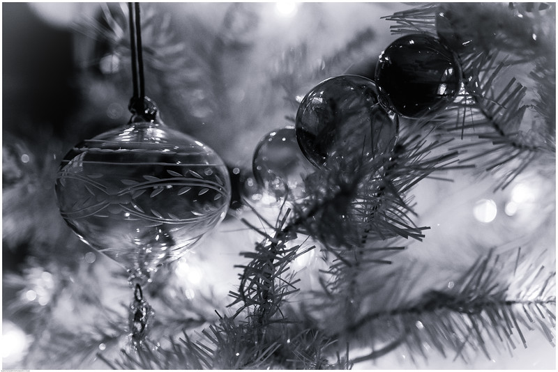 Christmas DSC_4534-Edit-1.jpg