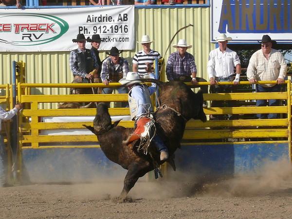Bull Ridings