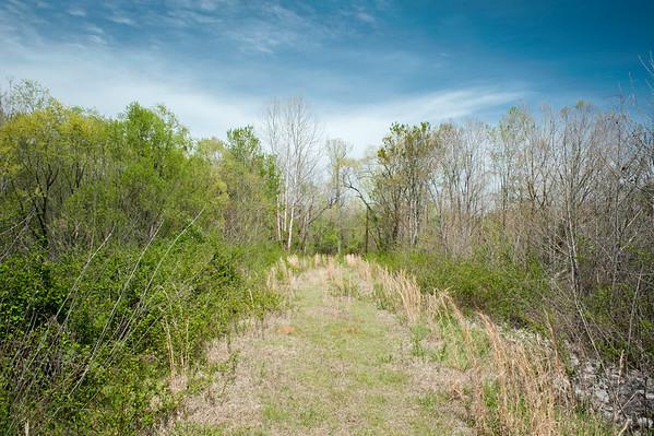 Oconee/Greene County (GA) April 2015