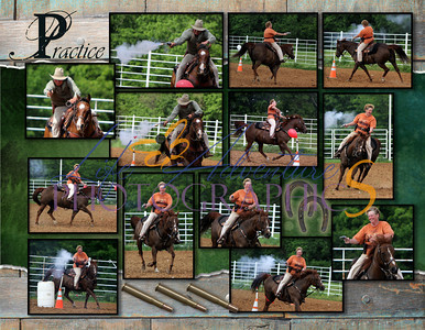 2012 Campbell's Horsing Around Book