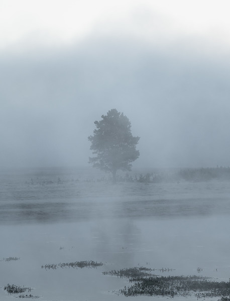 Misterious || Yellowstone River