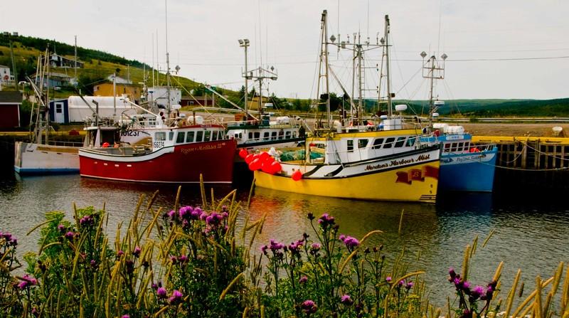 Boats in Harbor.jpg