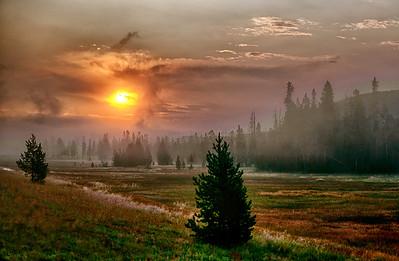 Yellowstone NP Wyoming