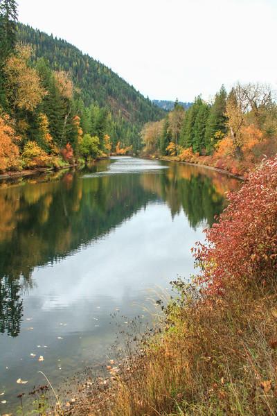 fall 2019 st maries river-1666.jpg