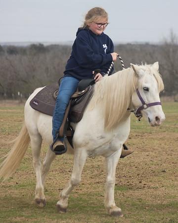 horsey smiles