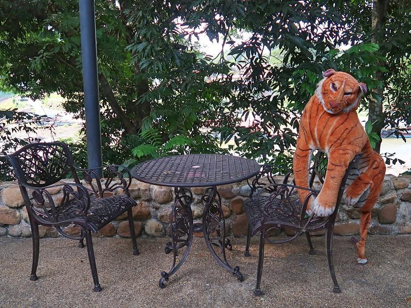 IMG_5255-tiger.jpg