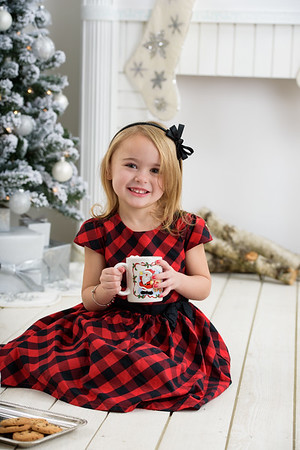 Lisa Christmas Mini
