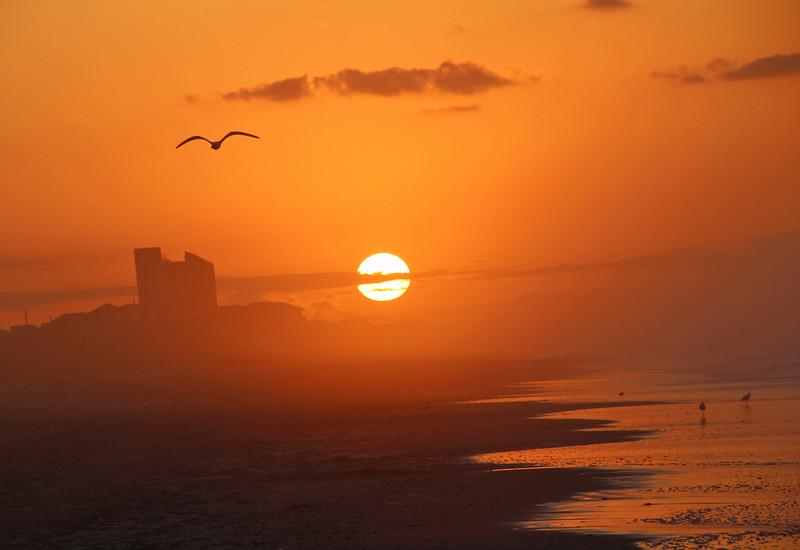 Indian sunrise 4