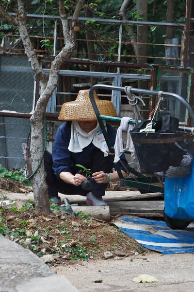 2009 China photography