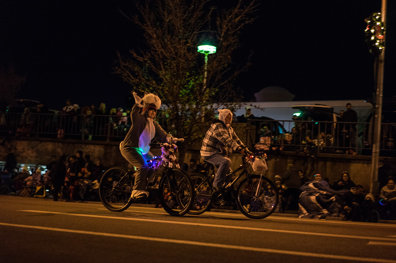 Light_Parade_2015-07947.jpg