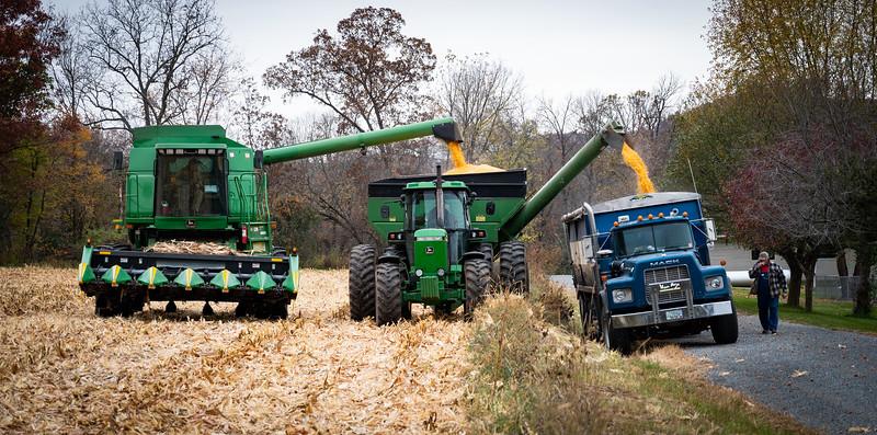 10-19-2020-harvest-9.jpg
