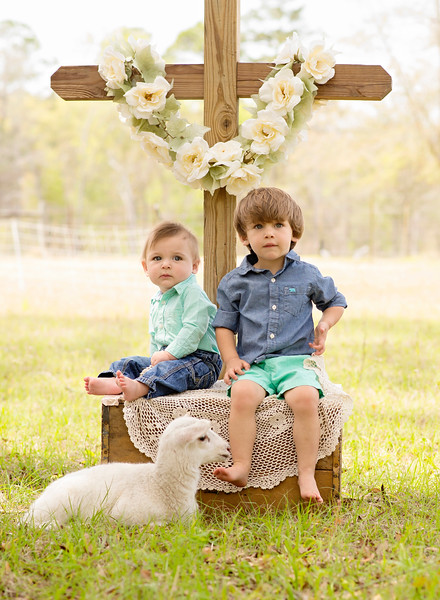 Tripp & Maverick~Little Lamb