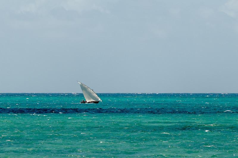 Hier sind wir gesurft, gesegelt und mit Delfinen geschwommen.