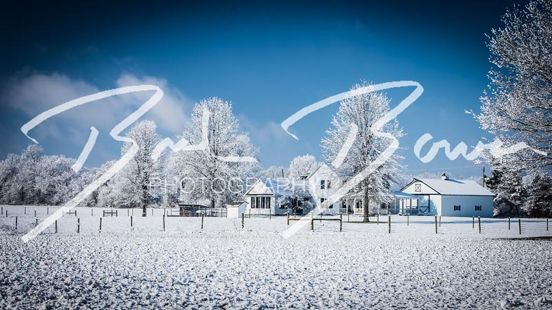 snow-83.jpg