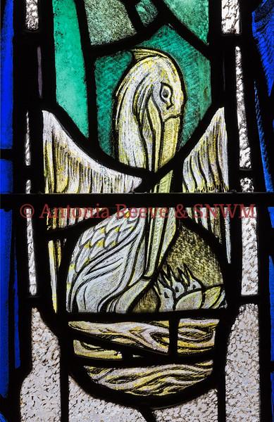 Detail of Shrine window 4, Pelican