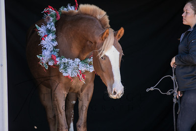 Redhorse Ranch - Christmas 2018