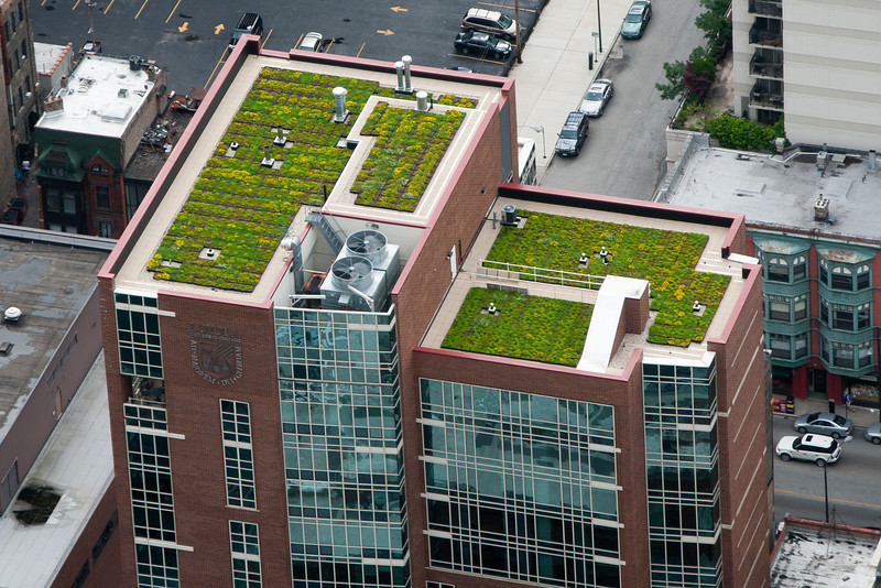One of Loyola's buildingswith a green roof.