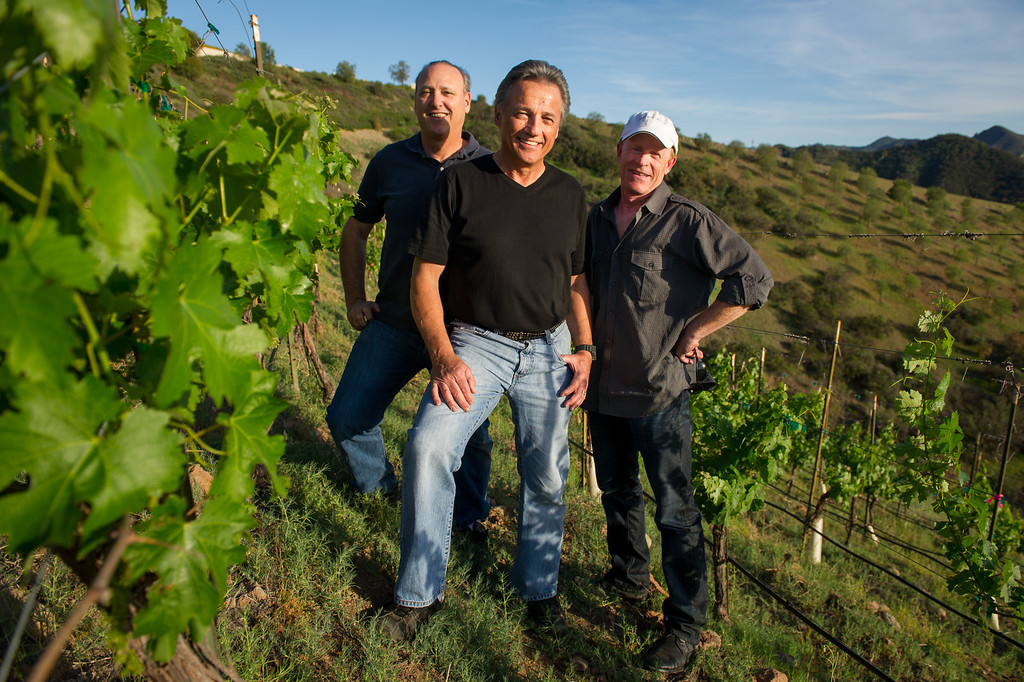 . Jeff Canter, from left, Chet Schreiber and Andy Coradeschi in the vineyard at Schreiber\'s Westlake home, Thursday, April 24, 2014. (Photo by Michael Owen Baker/L.A. Daily News)