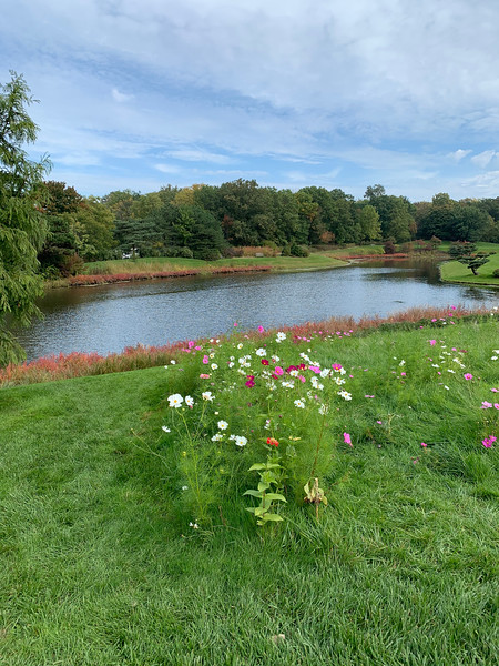 Chicago Botanic Garden 122.jpg