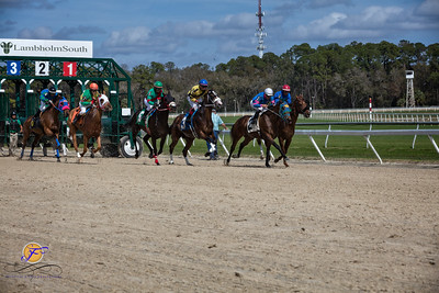 2018-02-07 Tampa Bay Downs