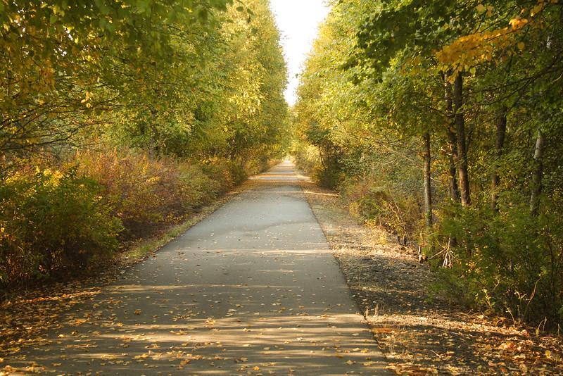 fall 2015-6380.jpg