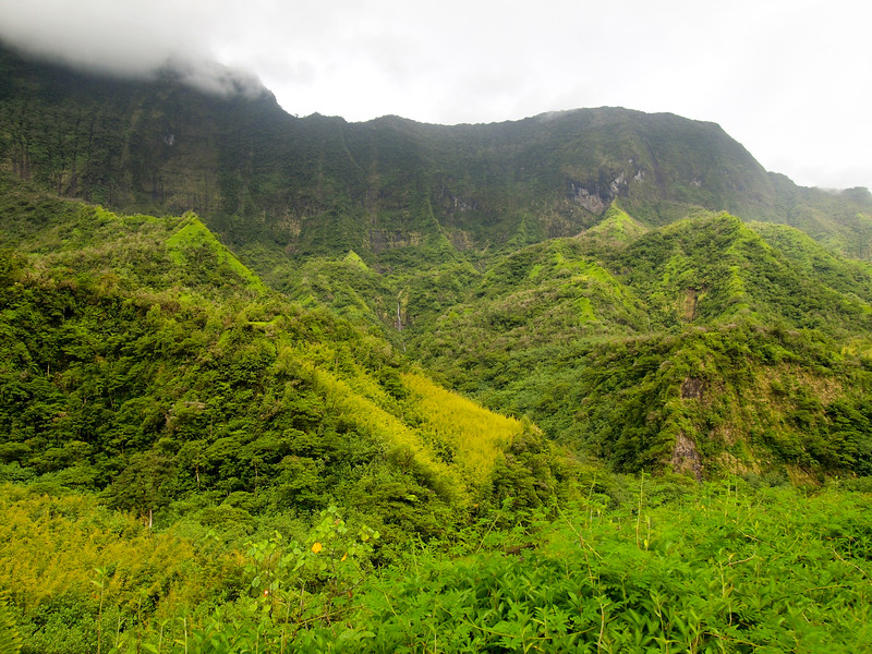 Cliffs and jungle in Tahiti