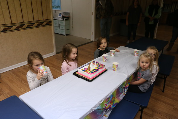 2018 Raylee's 4th Birthday Party