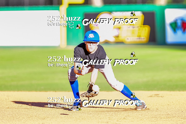 Sand Gnats vs Storm Chasers, Greenville Little Leagues Fall baseball, October 1, 2020