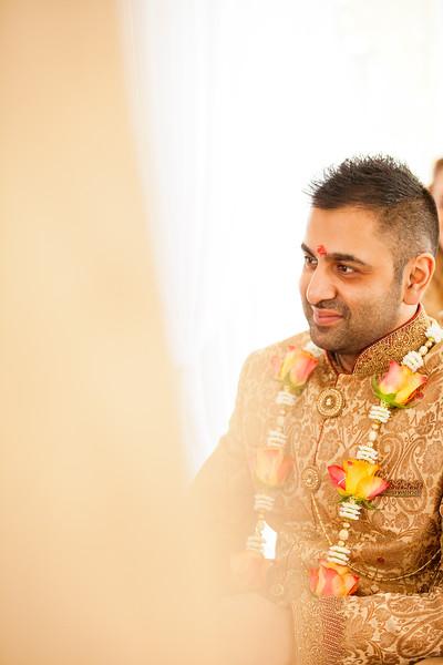 Rima & Anish (262).jpg