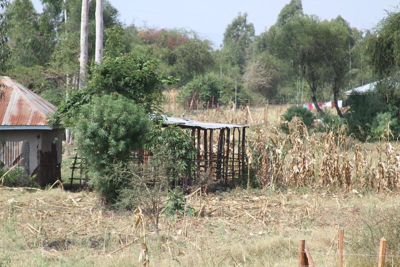 Kenya Part1 '15 1004.JPG