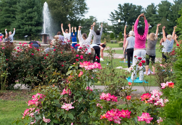 08/27/19 Wesley Bunnell | Staff Yoga in the Park is holding their last week of summer session classes with fall sessions slated to start in September through October. The program was put together by Kelly Murphy from Samatva Wellness in Berlin, the NB Parks and Recreation Department and the New Britain Health Department.