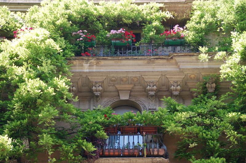 Balcony Gardens--Rome, Italy