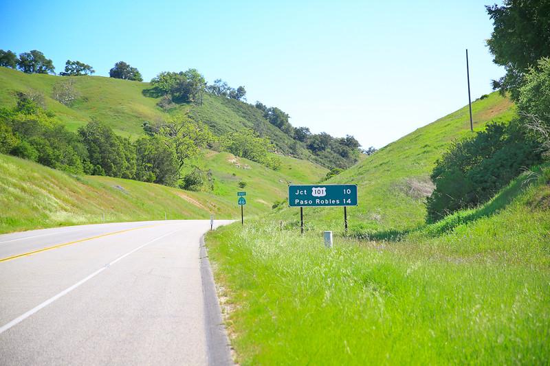 websize_Old Creek Road in Spring-0844.jpg