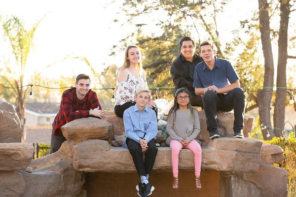 Viviani family