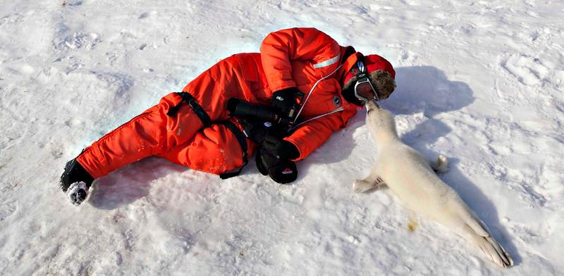 Arctic 2012