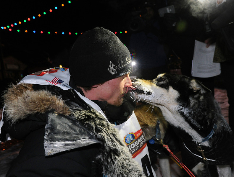 . Dallas Seavey gets a kiss from one of his dogs after winning the 2014 Iditarod Trail Sled Dog Race in Nome, Alaska, Tuesday, March 11, 2014.  (AP Photo/The Anchorage Daily News, Bob Hallinen)