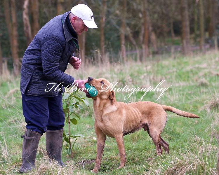 red dog 2597.jpg
