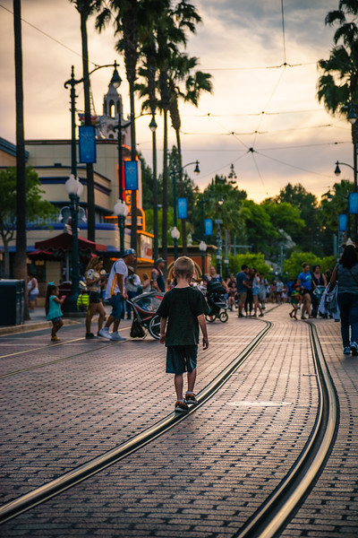 Disneyland-20150430-1504.jpg