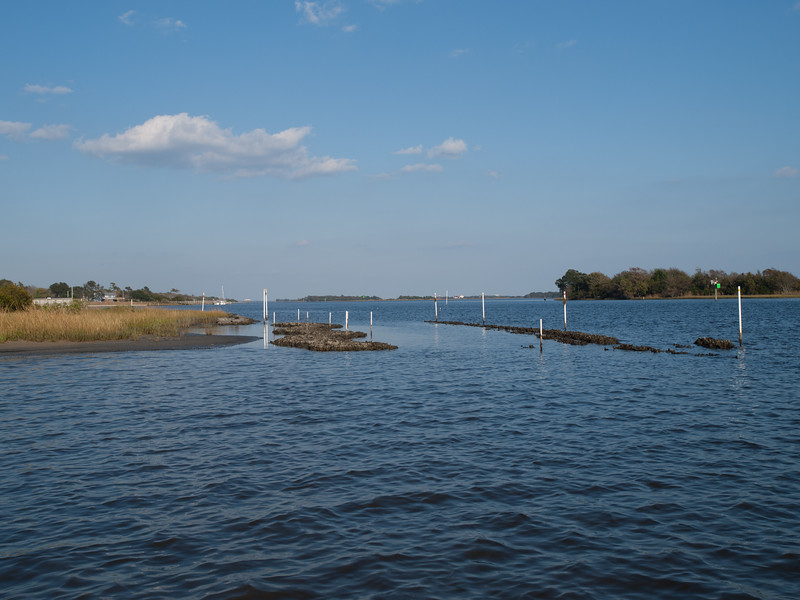 Marsh grasses -> oyster mesh bags -> concrete reef balls. SW of pier.