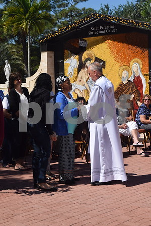 St. Peregrine Mass - Nov