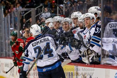 2015-12-31 Moose vs Wild