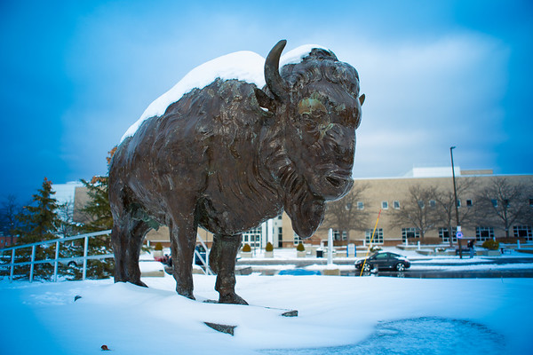 17467 North Campus, Bronze Buffalo, Snow, Center for the Arts