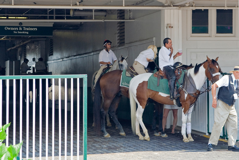 Pony Police.jpg