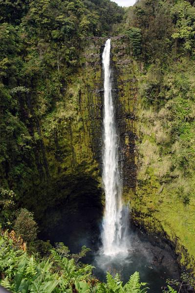 108- 20080409- Hawaii 15- Enroute to Hilo- Off-road Waterfalls DSC_2616.jpg