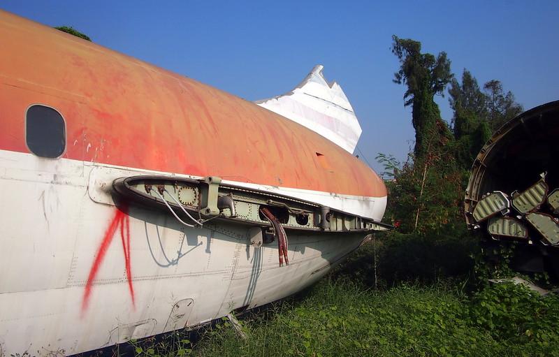 P3042850-broken-tail.JPG