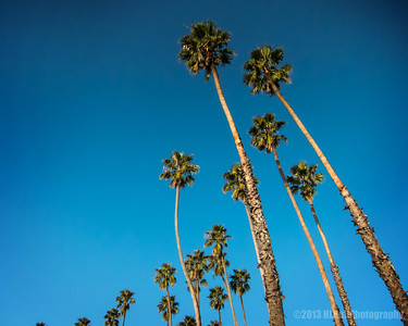 Santa Barbara Feb 2013