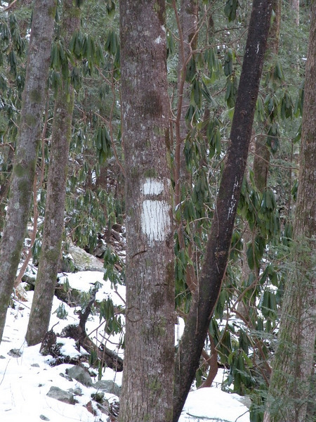 The Scenic Spur Trail to the waterfalls is blazed with this lower case i in white!