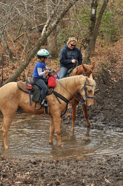 horse-riding-0166.jpg