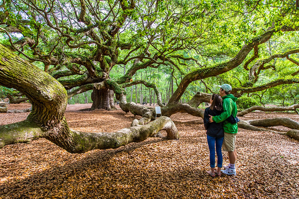 2017 04 - LeBlanc Angel Oak